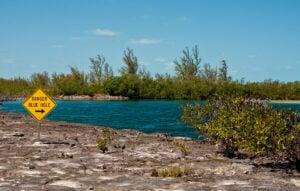 The Blue Holes of The Bahamas
